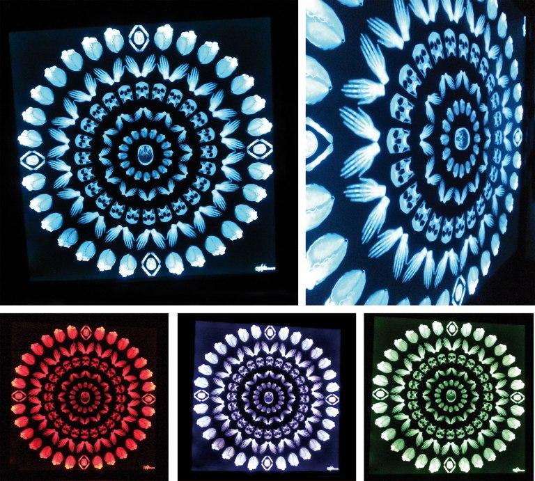 Céleste_plusieurs-couleurs