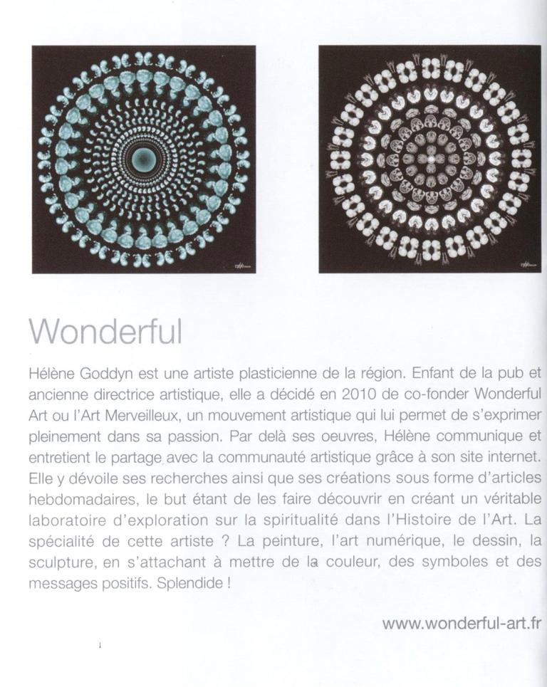 janvier 2014-article helene 1pulsion decorative