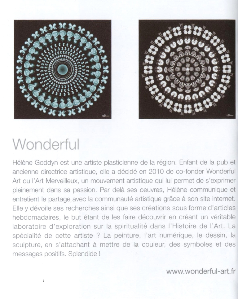 janvier 2014-article helene 1pulsion decorative