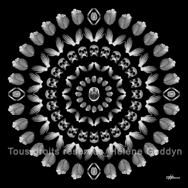 Mandala-Humain-CELESTE_Helene-Goddyn