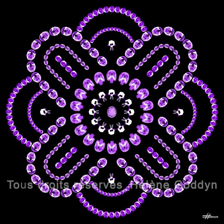Mandala-Humain-EQUILIBRE_Helene-Goddyn