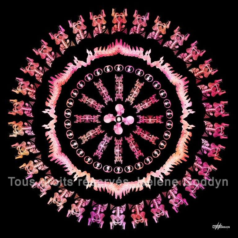 Mandala-Humain-IMAGINE_Hélène-Goddyn