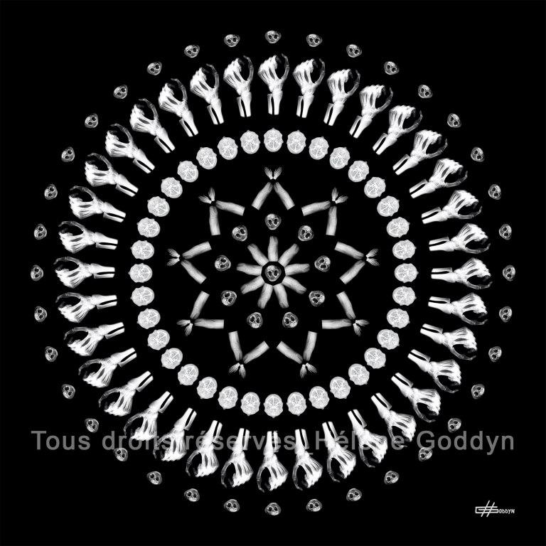 Mandala-Humain-Métamorphose_Helene-Goddyn