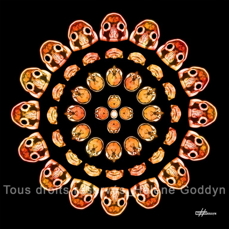 Mandala-Humain-Reflexion_Helene-Goddyn