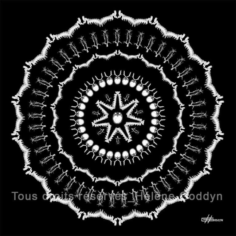 Mandala-Humain-VIBRATION_Helene-Goddyn