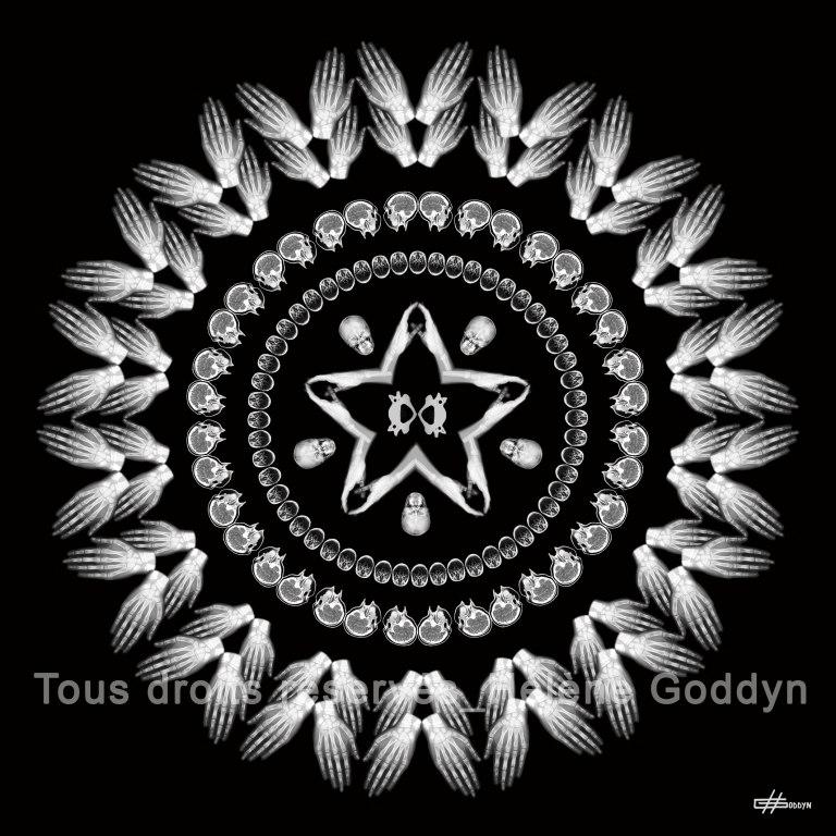 Mandala-Humain-VISION_Helene-Goddyn