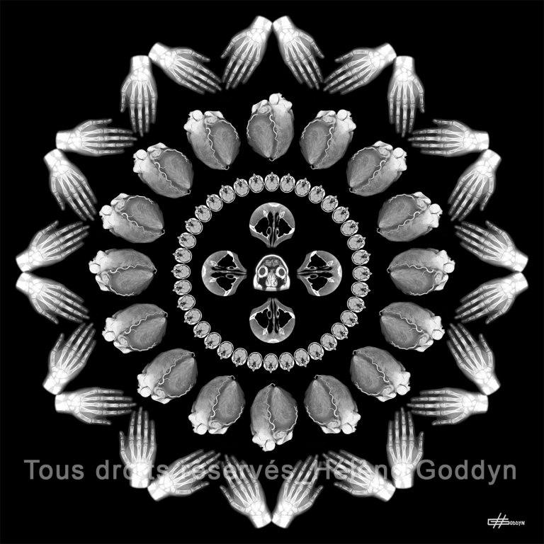 Mandala-Humain-VOLUPTE_Helene-Goddyn