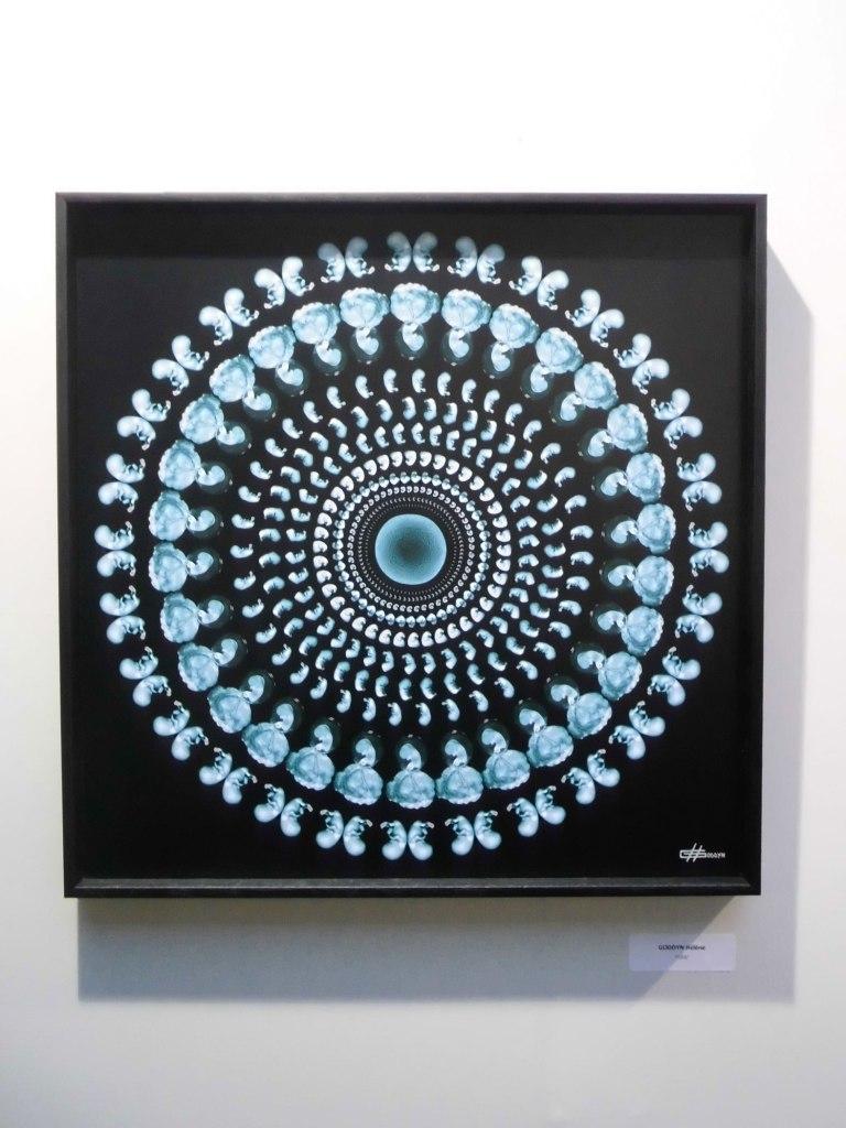 salon des artistes francais_art-en-capital_grand-palais_france_champs-elysées_helene-goddyn_mandala-humain_wonderful-life_mandala_art-sacré-et-image-medicale