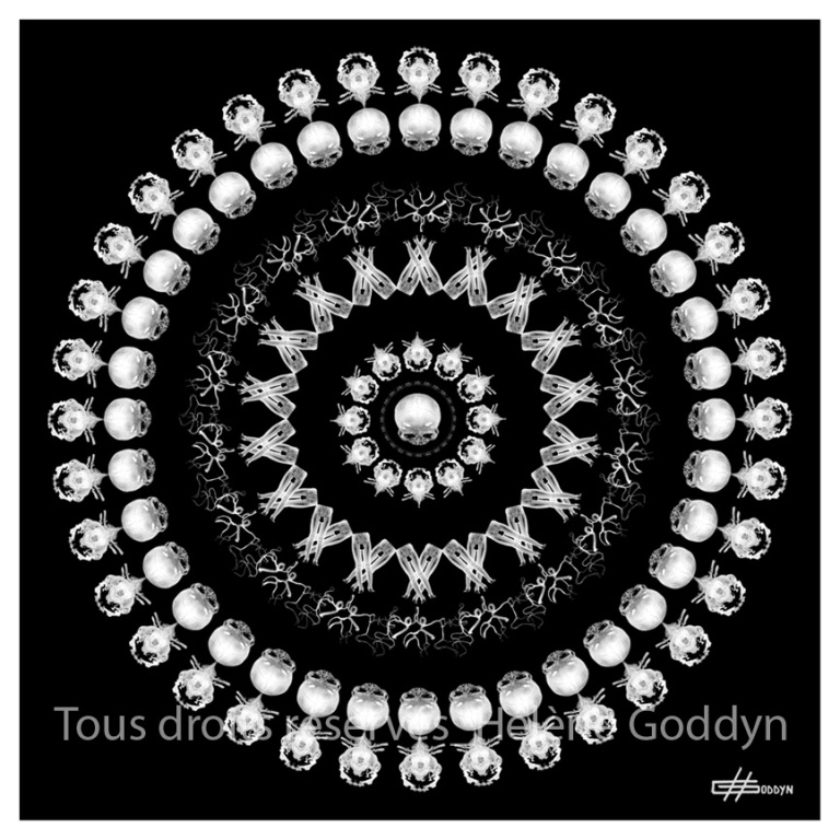 Mandala-Humain-ETRE_Helene-Goddyn